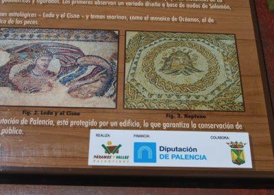 info-mosaico2