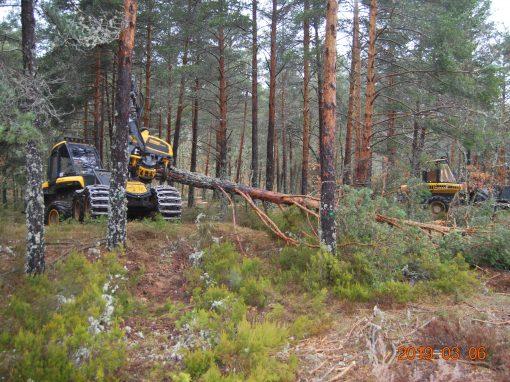 Adquisición de nueva maquinaria forestal